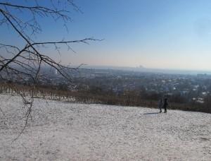 Blick vom Wilhelminenberg