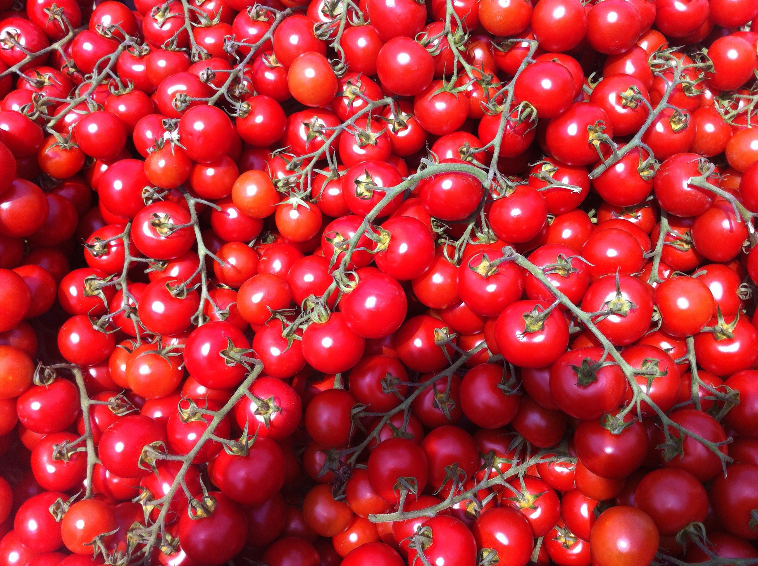 Tomaten am Hannovermarkt