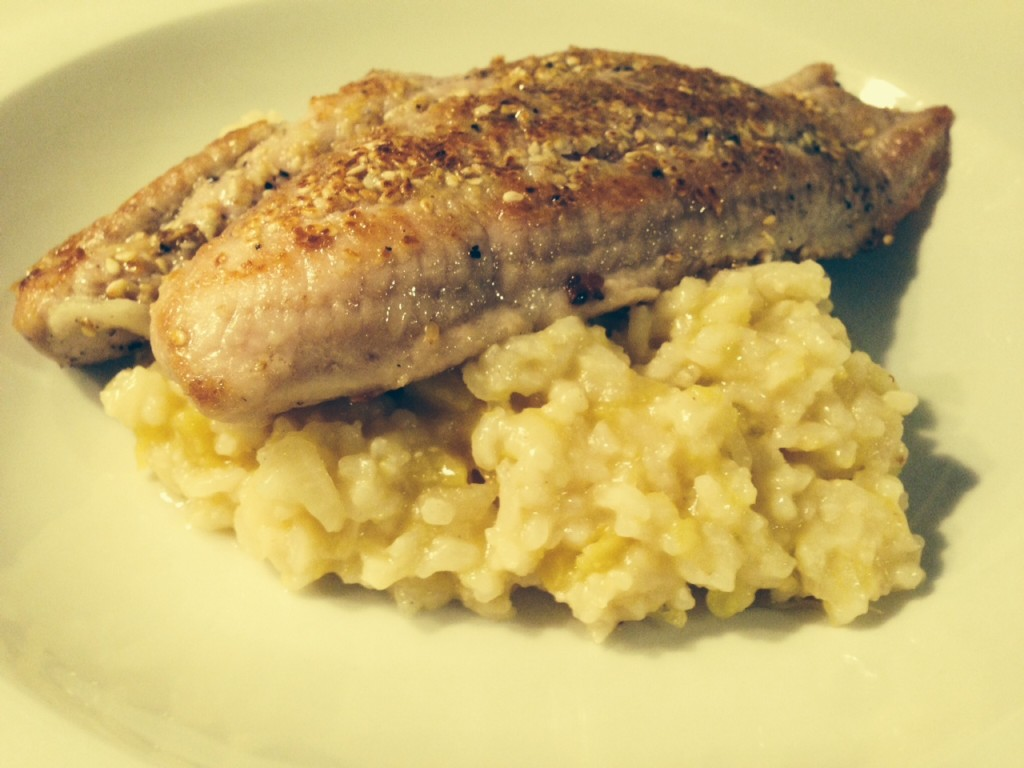 Welsfilet mit Risotto