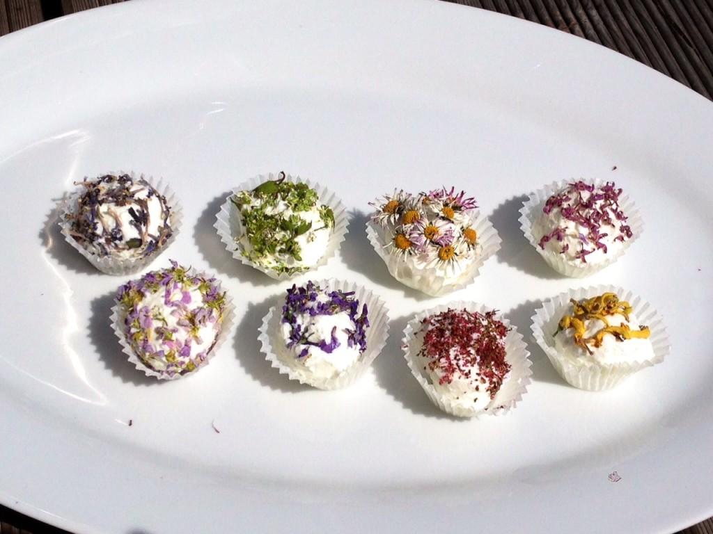 Frischkäsebällchen mit Blüten1