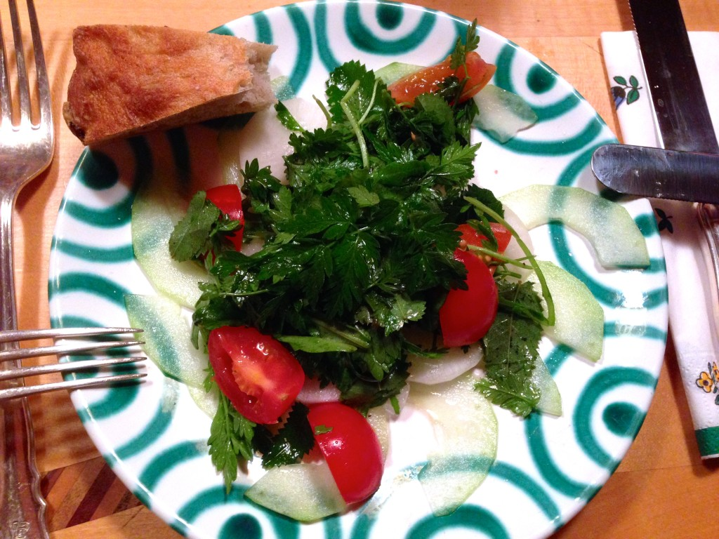 Gurken-Rettich-Carpaccio mit Wildkräutersalat